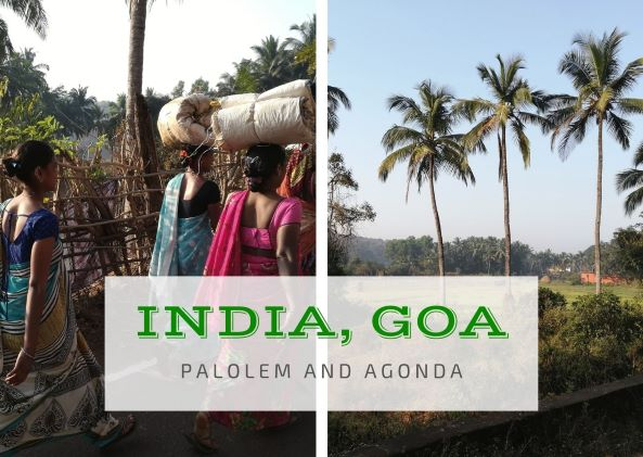 Calatoria in India, Goa | India prin ochii mei | VIDEO